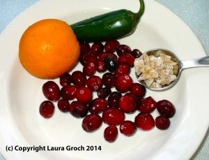 cranberries, orange, jalapeño, ginger