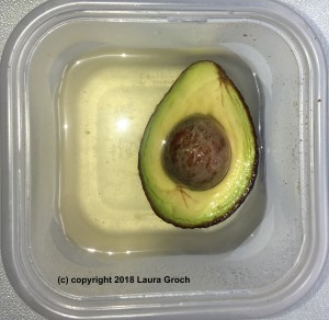 Submerging the cut surface of an avocado in water will also keep it from browning. (Photo by Laura Groch)